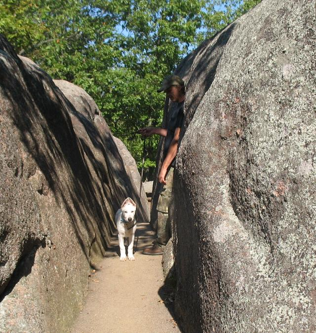 Me and Arctic at Elephant Rocks State Park part 2